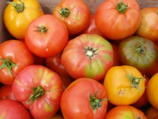 CSA All Natural Tomatoes