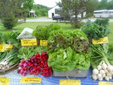 Fresh Produce at Westford Farmers' Market